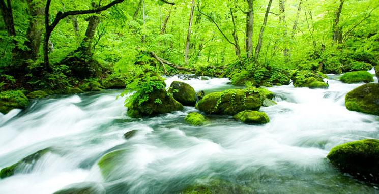 ポイント2 量子水とは? 見えない量子・電子が水を変える